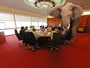 Elephant-in-the-Room-Harrison